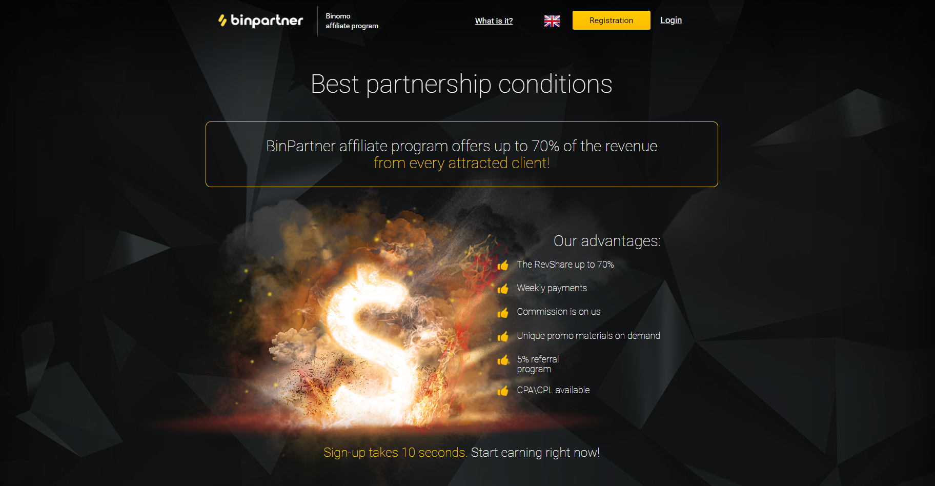 Website of the BinPartner affiliate program